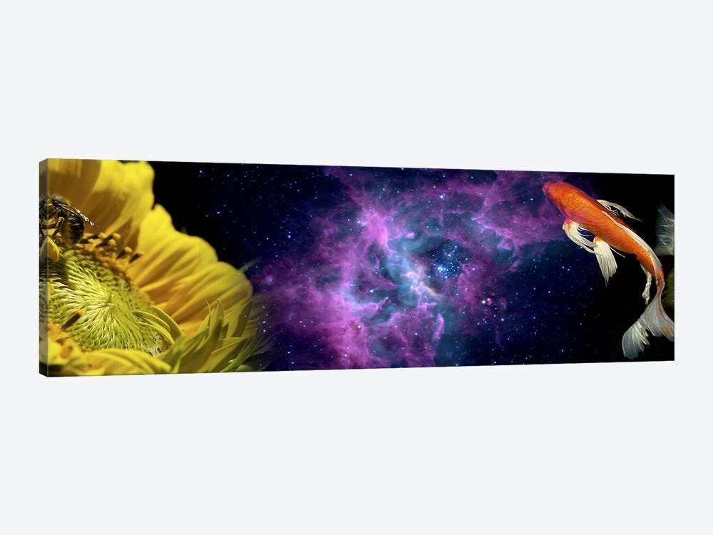 Sunflower and Koi Carp in space by Panoramic Images 1-piece Canvas Print