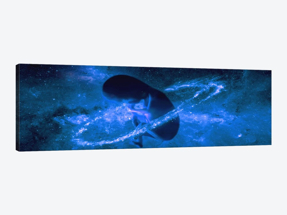 Baby in universe by Panoramic Images 1-piece Canvas Art Print
