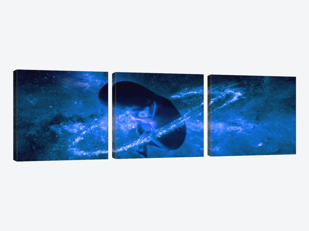 Baby in universe by Panoramic Images 3-piece Art Print