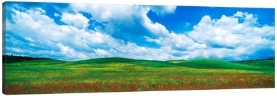 Open Field, Tuscany, Italy Canvas Print #PIM1027