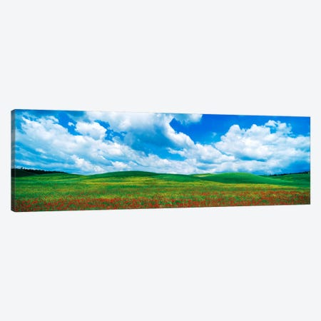 Open Field, Tuscany, Italy 3-Piece Canvas #PIM1027} by Panoramic Images Canvas Wall Art