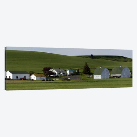 Farm with double barns in wheat fields, Washington State, USA Canvas Print #PIM10303} by Panoramic Images Canvas Art Print