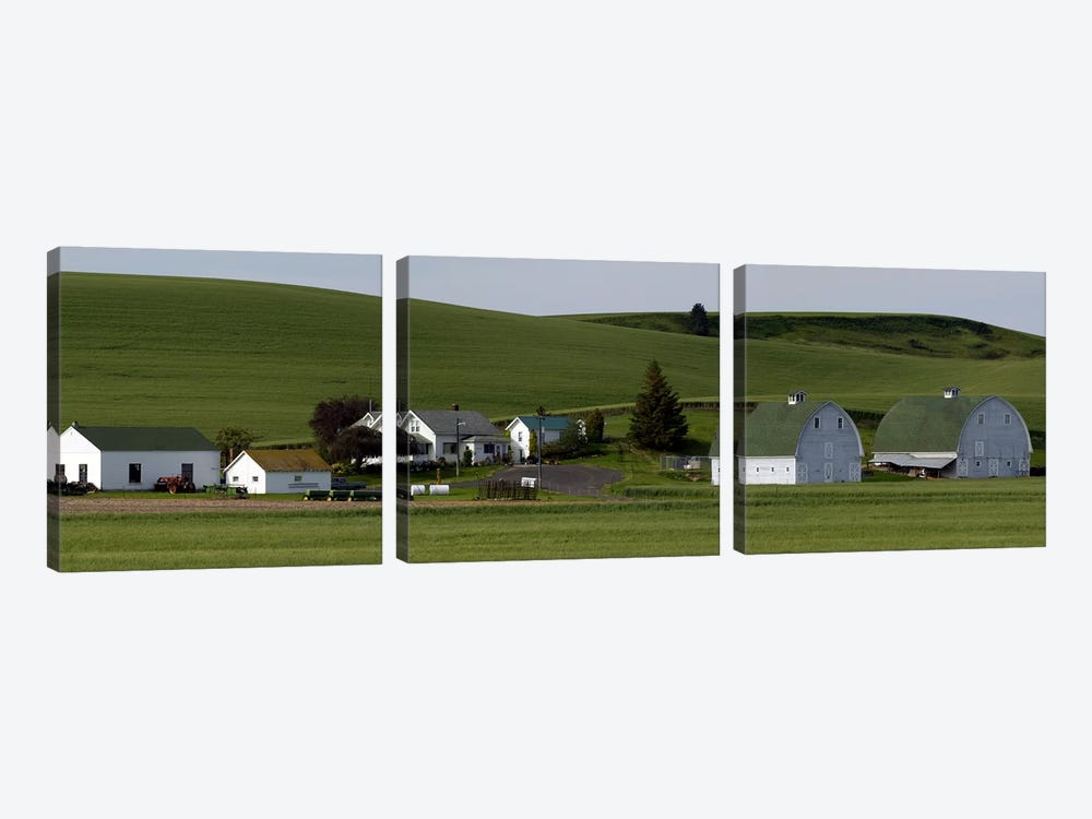 Farm with double barns in wheat fields, Washington State, USA by Panoramic Images 3-piece Canvas Print