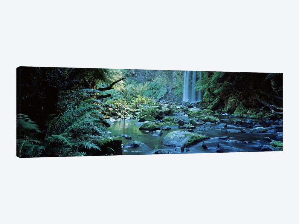 Waterfall in a forest, Hopetown Falls, Great Ocean Road, Otway Ranges National Park, Victoria, Australia by Panoramic Images 1-piece Canvas Art Print