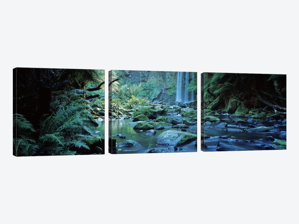 Waterfall in a forest, Hopetown Falls, Great Ocean Road, Otway Ranges National Park, Victoria, Australia 3-piece Canvas Print