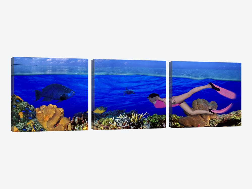 Underwater View Of A Diver Along A Reef Marine Ecosystem 3-piece Canvas Artwork
