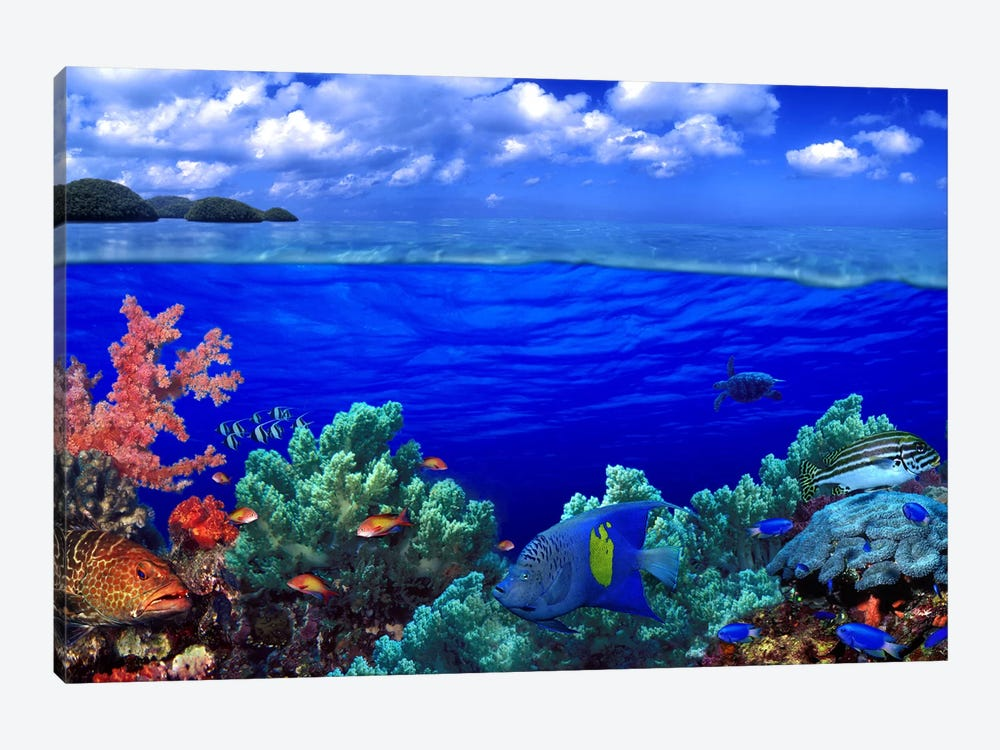 Cloudy Seascape With An Underwater View Of A Reef Marine Ecosystem by Panoramic Images 1-piece Canvas Wall Art