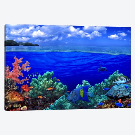 Cloudy Seascape With An Underwater View Of A Reef Marine Ecosystem Canvas Print #PIM10566} by Panoramic Images Canvas Art