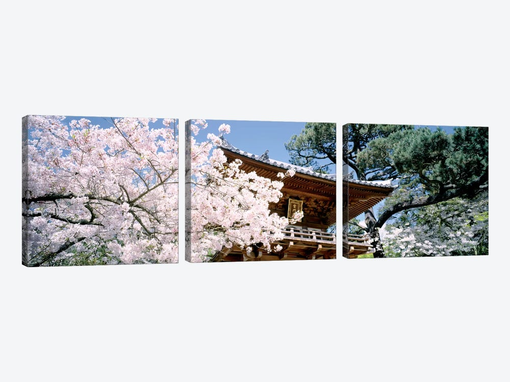 USA, California, San Francisco, Golden Gate Park, Japanese Tea Garden, front gate by Panoramic Images 3-piece Art Print