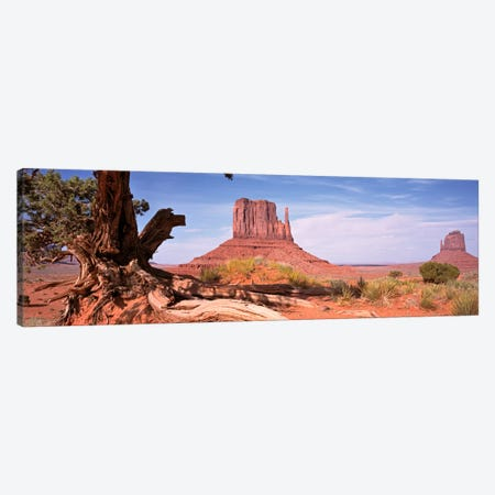 West And East Mitten Buttes (The Mittens) With A Gnarled Tree Trunk In The Foreground, Monument Valley, Navajo Nation, USA Canvas Print #PIM1078} by Panoramic Images Canvas Art
