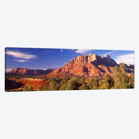 Canyon surrounded with forest, Escalante Canyon, Zion National Park, Washington County, Utah, USA Canvas Print #PIM1079} by Panoramic Images Canvas Art