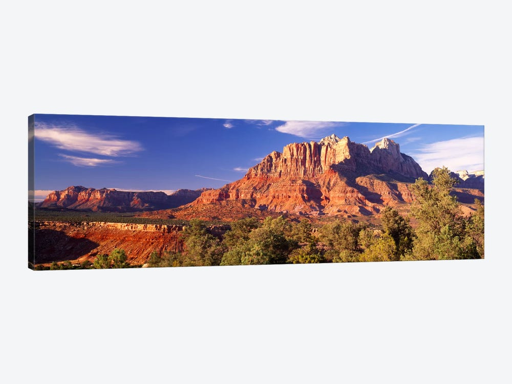Canyon surrounded with forest, Escalante Canyon, Zion National Park, Washington County, Utah, USA by Panoramic Images 1-piece Canvas Art