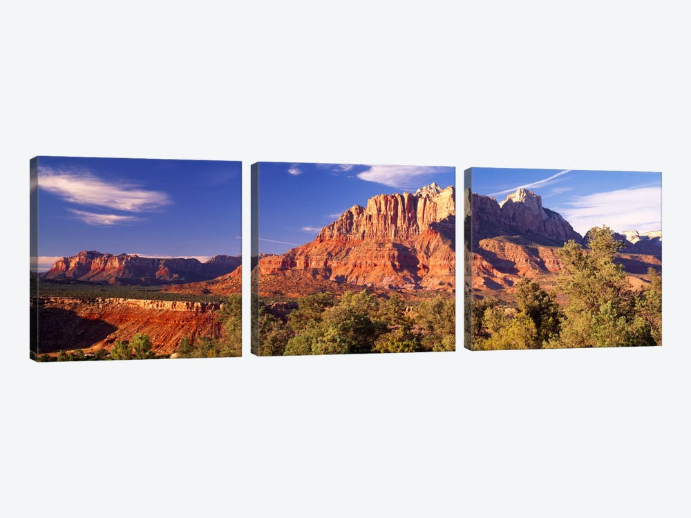 Canyon surrounded with forest, Escalante Canyon, Zion National Park, Washington County, Utah, USA 3-piece Canvas Artwork