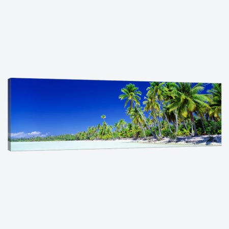 Palm Tree Laden Beach, Bora Bora, Society Islands, French Polynesia Canvas Print #PIM107} by Panoramic Images Canvas Artwork