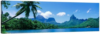 Tropical Landscape,Mo'orea, Society Islands, French Polynesia Canvas Art Print