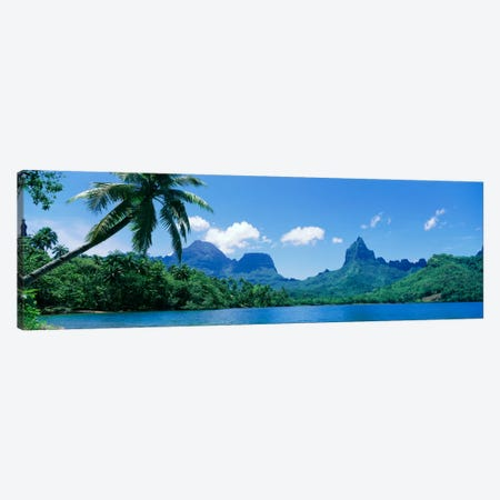 Tropical Landscape,Mo'orea, Society Islands, French Polynesia Canvas Print #PIM108} by Panoramic Images Canvas Print