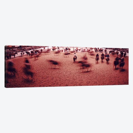 Rodeo arena, Fort Worth Stock Show and Rodeo, Fort Worth, Texas, USA Canvas Print #PIM10947} by Panoramic Images Canvas Wall Art