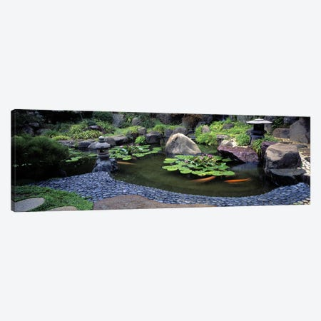 Lotus blossoms, Japanese Garden, University of California, Los Angeles, California, USA #2 Canvas Print #PIM10952} by Panoramic Images Canvas Art