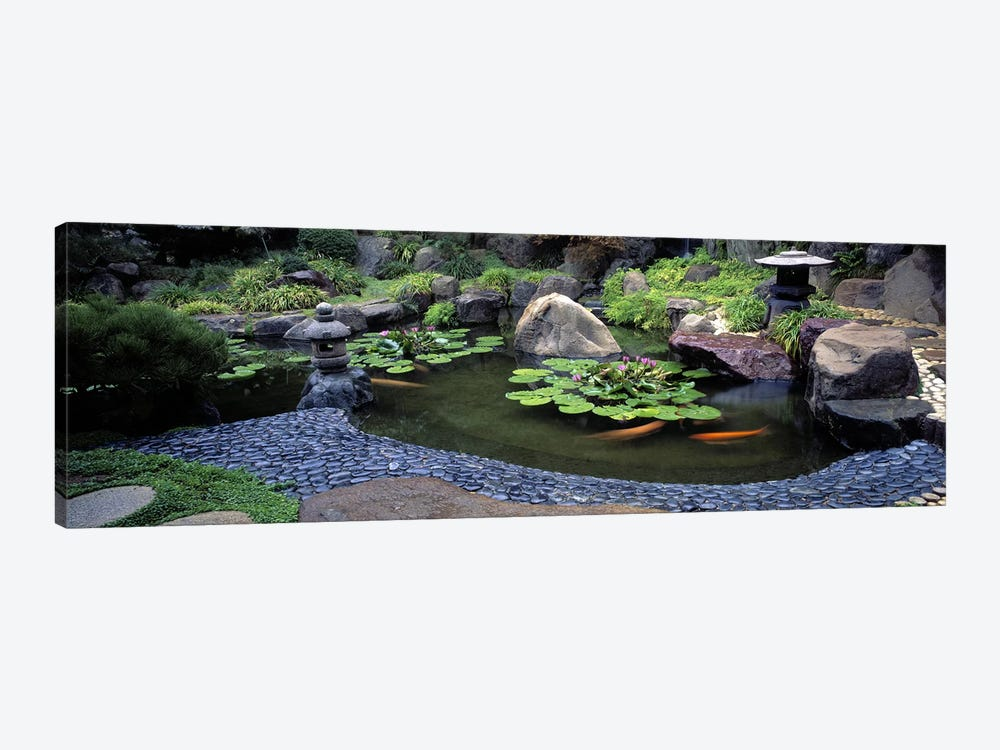 Lotus blossoms, Japanese Garden, University of California, Los Angeles, California, USA #2 by Panoramic Images 1-piece Art Print