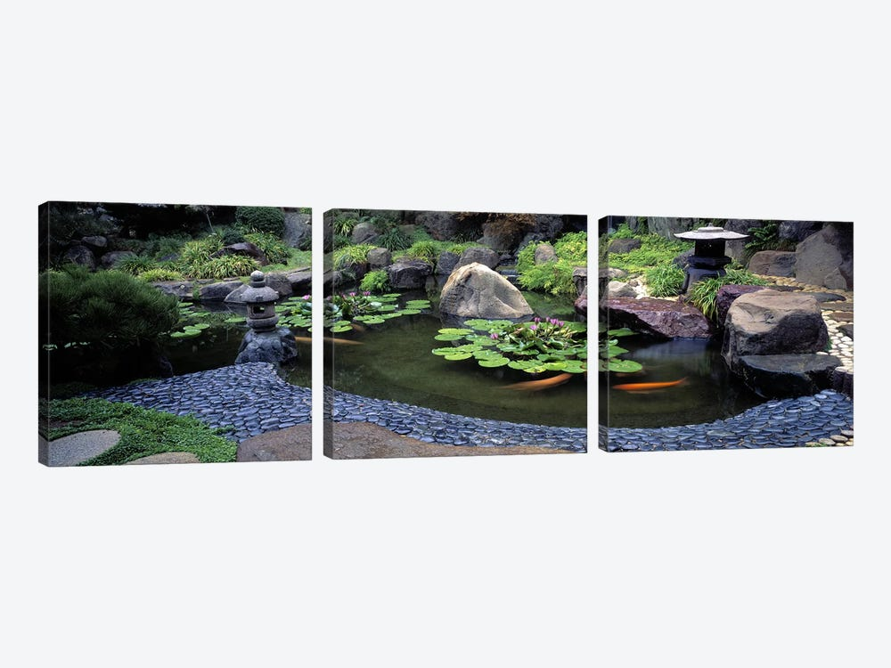 Lotus blossoms, Japanese Garden, University of California, Los Angeles, California, USA #2 by Panoramic Images 3-piece Art Print