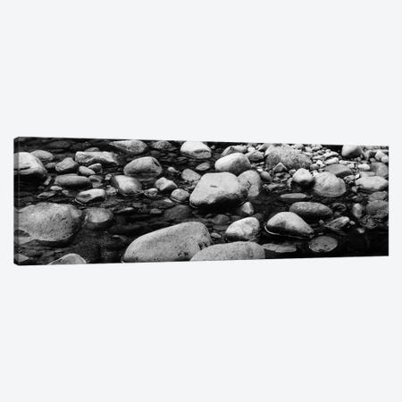 River Stones In B&W, Swift River, White Mountain National Forest, New Hampshire, USA Canvas Print #PIM11002} by Panoramic Images Canvas Print