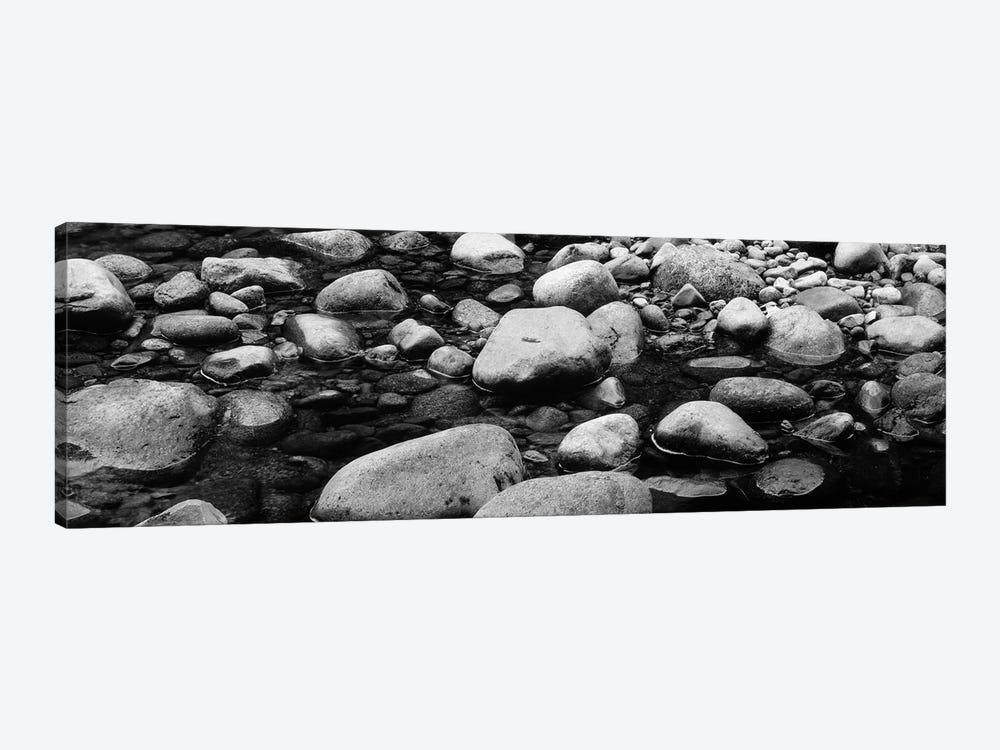 River Stones In B&W, Swift River, White Mountain National Forest, New Hampshire, USA by Panoramic Images 1-piece Canvas Wall Art