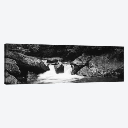 River in a forest, Tallulah River, Coleman River Scenic Area, Chattahoochee-Oconee National Forest, Georgia, USA 3-Piece Canvas #PIM11005} by Panoramic Images Canvas Art