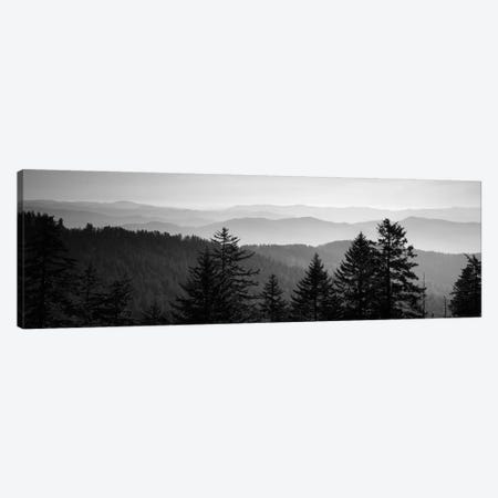 Vast Landscape In B&W, Great Smoky Mountains National Park, North Carolina, USA Canvas Print #PIM11010} by Panoramic Images Canvas Art