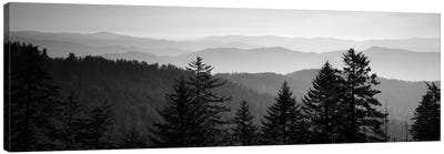 Vast Landscape In B&W, Great Smoky Mountains National Park, North Carolina, USA Canvas Art Print