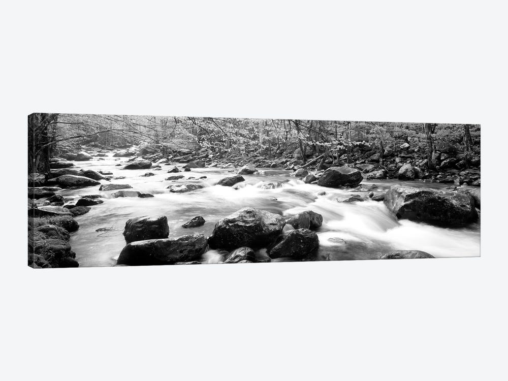 Little Pigeon River Great Smoky Mountains National Park Tennessee, USA by Panoramic Images 1-piece Art Print