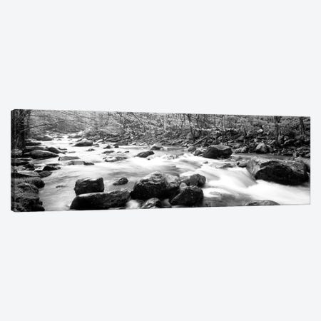 Little Pigeon River Great Smoky Mountains National Park Tennessee, USA Canvas Print #PIM11029} by Panoramic Images Art Print