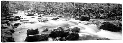 Little Pigeon River Great Smoky Mountains National Park Tennessee, USA Canvas Art Print