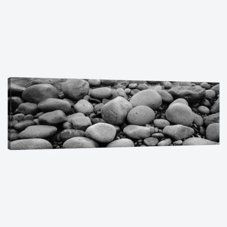 Close-Up Of Rocks, Acadia National Park, Maine, USA Canvas Print #PIM11031} by Panoramic Images Canvas Art