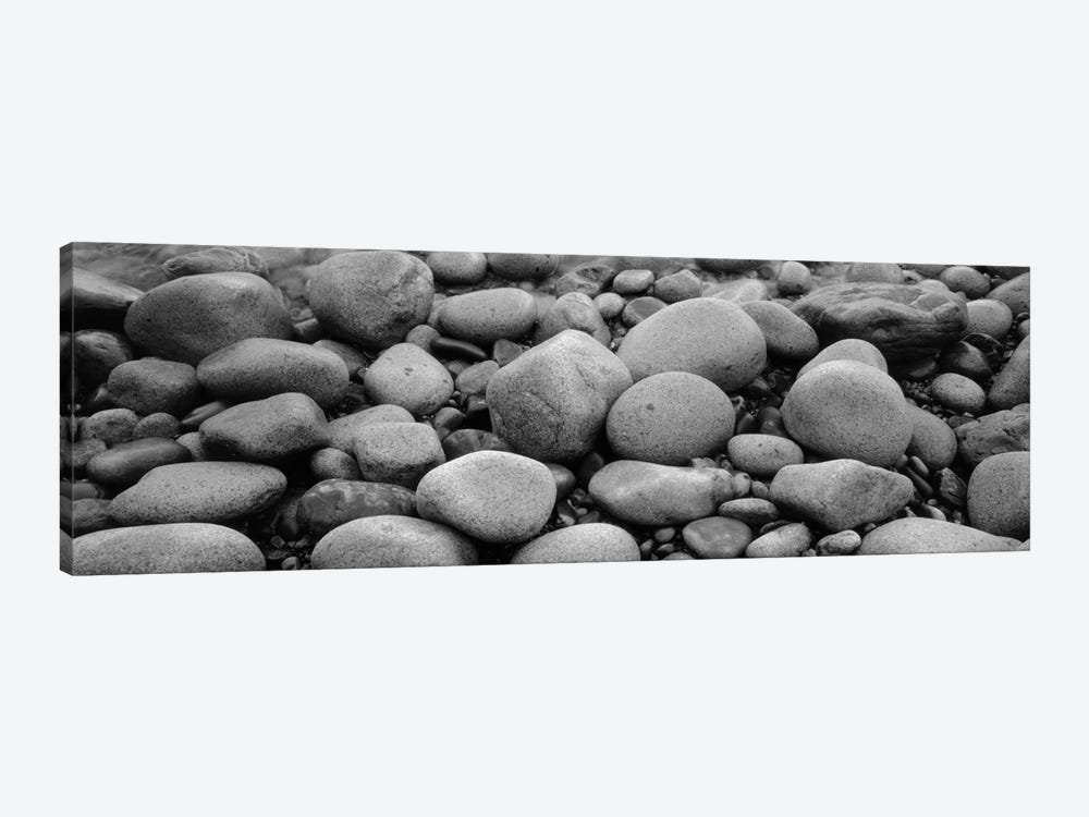 Close-Up Of Rocks, Acadia National Park, Maine, USA by Panoramic Images 1-piece Canvas Artwork