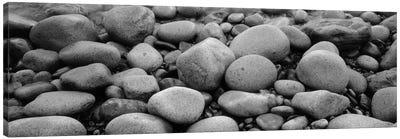 Close-Up Of Rocks, Acadia National Park, Maine, USA Canvas Art Print