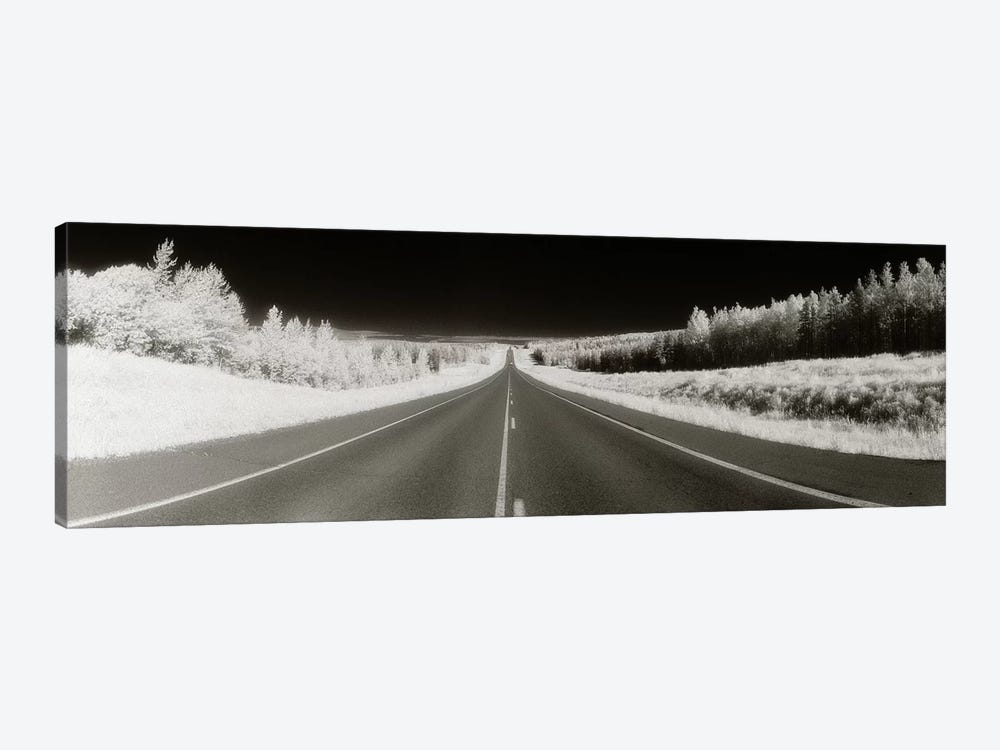 Long Road Ahead (Negative), Alaska Highway, Alaska, USA by Panoramic Images 1-piece Canvas Artwork