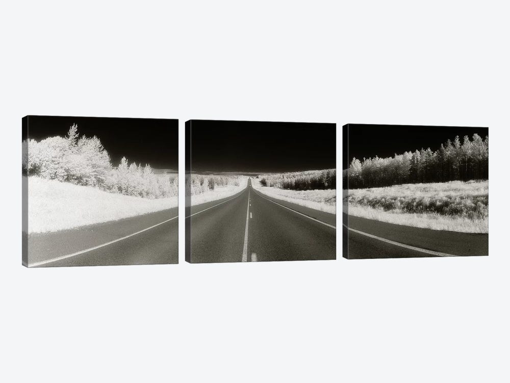 Long Road Ahead (Negative), Alaska Highway, Alaska, USA by Panoramic Images 3-piece Canvas Artwork
