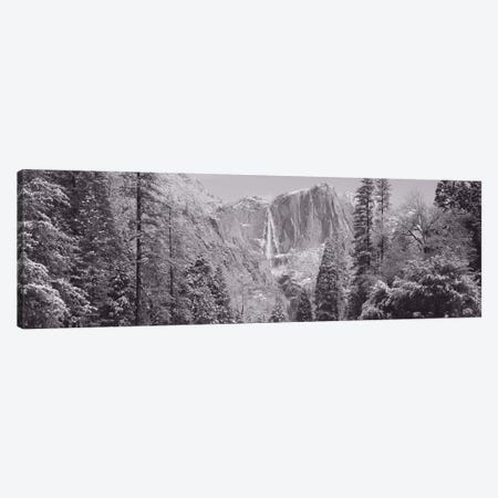 Yosemite Falls, California, USA Canvas Print #PIM11041} by Panoramic Images Canvas Art Print