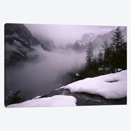 USA, California, Yosemite National Park, Fog over the forest Canvas Print #PIM11163} by Panoramic Images Canvas Art