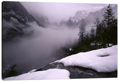 USA, California, Yosemite National Park, Fog over the forest Canvas Art Print