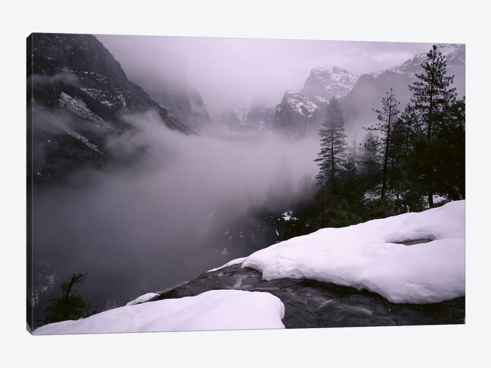 USA, California, Yosemite National Park, Fog over the forest by Panoramic Images 1-piece Canvas Art