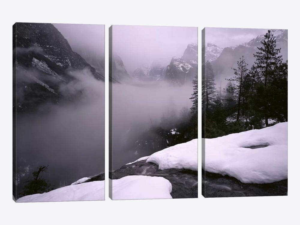 USA, California, Yosemite National Park, Fog over the forest by Panoramic Images 3-piece Canvas Wall Art