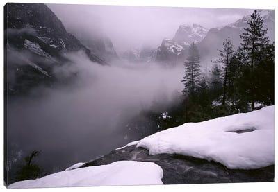 USA, California, Yosemite National Park, Fog over the forest Canvas Art Print