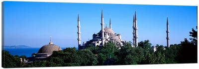 Blue Mosque Istanbul Turkey #3 Canvas Art Print