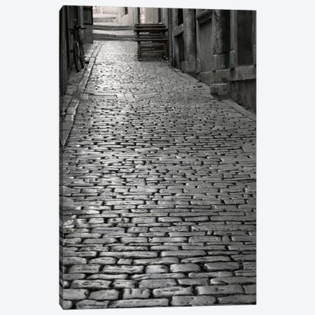 Cobbles street, Rovinj, Istria, Croatia Canvas Print #PIM11463} by Panoramic Images Canvas Art Print