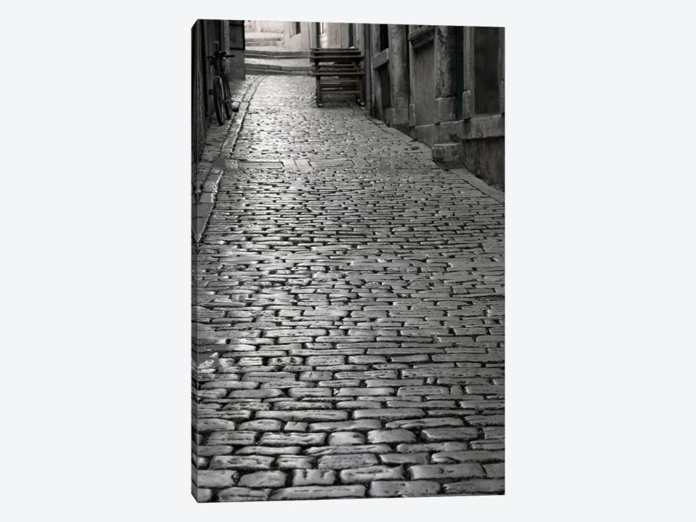 Cobbles street, Rovinj, Istria, Croatia by Panoramic Images 1-piece Canvas Artwork
