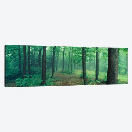 Chestnut Ridge Park, Orchard Park, New York State, USA Canvas Print #PIM1165} by Panoramic Images Canvas Art Print