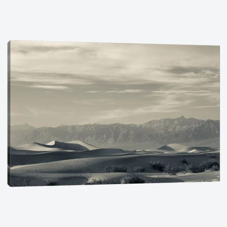 Sand dunes in a desert and Mountain Range, Mesquite Flat Sand Dunes, Death Valley National Park, Inyo County, California, USA Canvas Print #PIM11682} by Panoramic Images Canvas Art Print