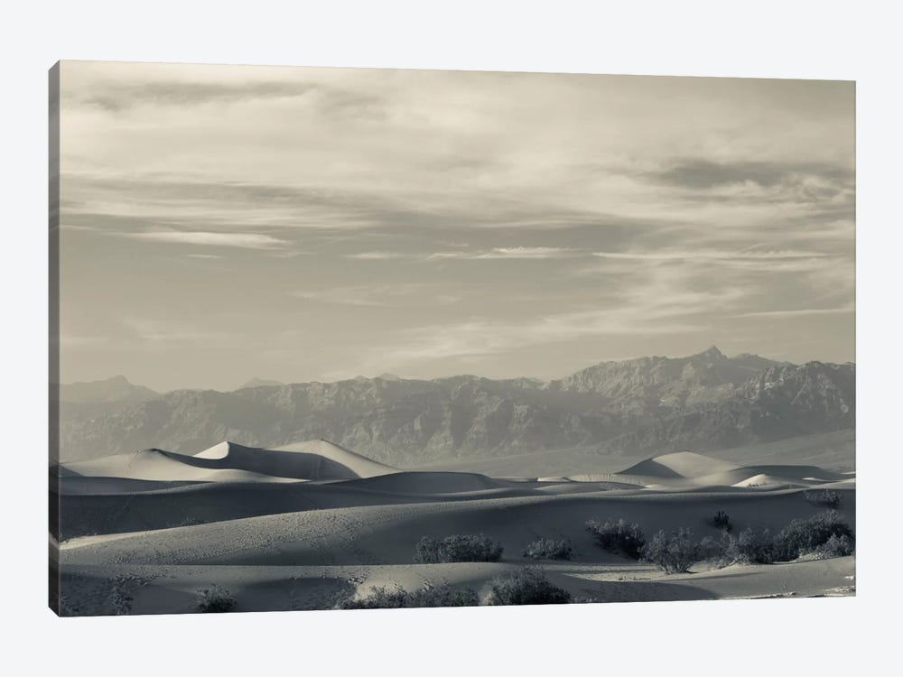 Sand dunes in a desert and Mountain Range, Mesquite Flat Sand Dunes, Death Valley National Park, Inyo County, California, USA by Panoramic Images 1-piece Canvas Artwork