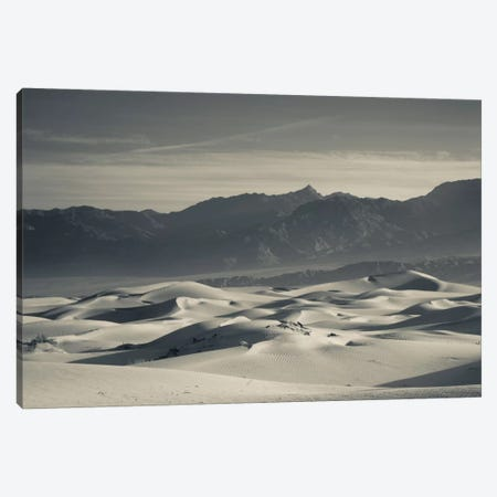 Sand dunes in a desert and Mountain Range 2, Mesquite Flat Sand Dunes, Death Valley National Park, Inyo County, California, USA Canvas Print #PIM11683} by Panoramic Images Art Print